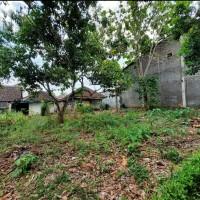 1 bidang tanah dengan total luas 305 m<sup>2</sup> di Kabupaten Wonogiri