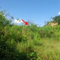 1 bidang tanah dengan total luas 16000 m<sup>2</sup> di Kota Samarinda