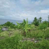 PT BRI Luwuk, 1 bidang tanah dengan total luas 5052 m2 di Kabupaten Banggai
