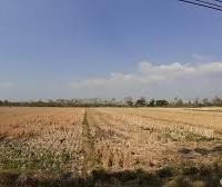 1 bidang tanah dengan total luas 7500 m2 di Kabupaten Konawe