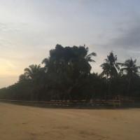 BRI Bagansiapiapi: Tanah kebun kelapa sawit SHM No.40 luas tanah 19975m2 terletak di Jl.Manggala Lima,Manggala Sakti,Tanah Putih,Rokan Hilir