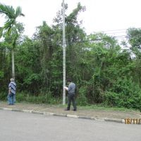 1 bidang tanah dengan total luas 1227 m2 di Kabupaten Muaro Jambi