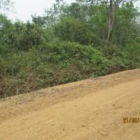 1 bidang tanah dengan total luas 922 m2 di Kabupaten Batang Hari