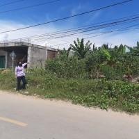 1 bidang tanah&bangunan luas 195 m2 terletak di Kel.Panasakan,Kec.Baolan,Kab.Toli-Toli SHM No.1698 an.Hi.Cinta. BRI TOLIS