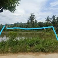 1 bidang tanah dengan total luas 500 m2 di Kabupaten Polewali Mandar