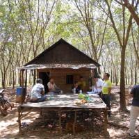 BNI PADANGSIDIMPUAN : 4 bidang tanah total luas 79.723 m2, SHM No.6, 8, & 20 an. Tohar Tanjung dan SHM No.7 an. Siti Alinur di Portibi