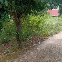 (BRI KC Jambi) : 1 bidang tanah dengan total luas 298 m2 di Kota Jambi