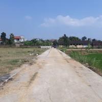 BRI Karanganyar - 1 bidang tanah sawah/pekarangan dengan luas 8537 m2 SHM Nomor 3125, di Desa Mojodoyong, Kec. Kedawung, Kab. Sragen