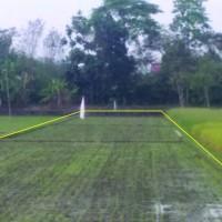 BPR Adipura Santosa: Sebidang tanah sesuai SHM No. 764 luas 2425 m2 di Desa Gesikan, Kecamatan Gantiwarno, Kabupaten Klaten