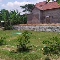 (BRI Brebes) 1 bidang tanah dengan total luas 210 m2 di Ds.Limbangan, Kec. Losari, Kab. Brebes