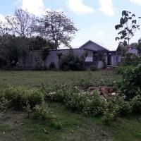 1 bidang tanah dengan total luas 410 m2 di Kabupaten Badung (Tim Likuidasi PT. BPR Legian)