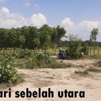 BPR Delta - Sebidang tanah se luas 940 m2, SHM No. 578/Desa Sumberkolak, Kab. Situbondo