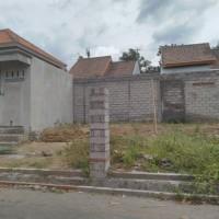 5. BPR Aruna Nirmaladuta (28-01) - 1 (satu) bidang tanah SHM No. 01571 dengan luas 100m2 beserta bangunan di Ds. Penglatan - Buleleng