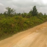 BNI WIL PADANG : Tanah 20.000 m2, SHM No. 252 di Kel. Rimbo Panjang, Kec. Kampar, Kab. Kampar, Prov. Riau