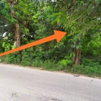 PT Bank Permata Tbk, Lot 1b: 1 bidang tanah dengan total luas 1202 m2 di Kota Palu