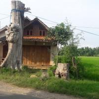 BKK Lasem ; tanah dan bangunan SHM No. 00473, Luas 234 m2 di Desa Padaan, Kec, Japah, Kab, Blora