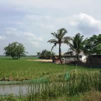 BRI Cikampek : Sebidang tanah sawah  luas 3.395 m2, SHM No. 00629 di Karyabakti, Batujaya, Karawang