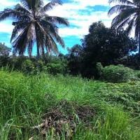 5b. Sebidang tanah seluas 884 m2 berikut segala sesuatu diatasnya terletak di Kel.Sumur Dewa Kota Bengkulu