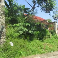 Bank Mandiri : Sebidang tanah luas 500 m2, SHM No. 780 di Blok Ceulibadak,Tegalmunjul, Kabupaten Purwakarta