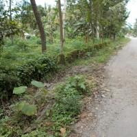 BRI Blitar - 1 bidang tanah dengan total luas 3580 m2 di Kabupaten Blitar