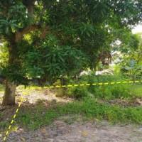 Mandiri SMCR : 1 bidang tanah dengan total luas 234 m2 di Kota Balikpapan