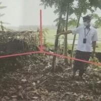 1 bidang tanah dengan SHM No. 508 luas 1880 m2 di Kabupaten Tabanan (BPD Bali Capem Bajera)