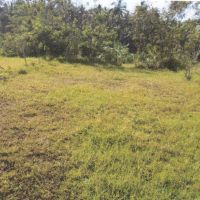 1 bidang tanah dengan SHM No. 02075 luas 150 m2 di Kabupaten Tabanan (BPD Bali Capem Bajera)