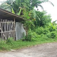 BRI Lumajang - 1 bidang tanah dengan total luas 150 m2 di Kabupaten Lumajang