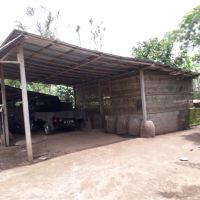 BPD Bali Bangli (21-04)b: 1 (satu) bidang tanah SHM No.661 luas 6000 m2 berikut bangunan di Ds. Tiga, Kec. Susut, Kab. Bangli