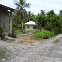 PNM: Lot 3: 1 bidang tanah seluas 6.642 m2 di Kab. Poso Prov. Sulteng