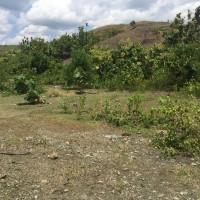 (BRI Watansoppeng) tanah (SHM No.4031), Luas tanah 451 m2, di Jl Pakkanrebete, Kel/Desa Lalabatrilau, Kec.Lalabata,Kab. Soppeng