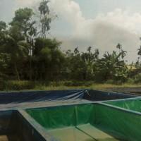 BPR Sumsel : Sebidang tanah luas 1.109 m2 di Kelurahan Sukajadi, Kecamatan Talang Kelapa, Kabupaten Banyuasin