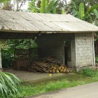 BRI Cab Bangli (21-04): 1 (satu) bidang tanah SHM No. 00212 luas 1600 m2 berikut bangunan di Ds. Pengiangan, Kec. Susut, Kab. Bangli