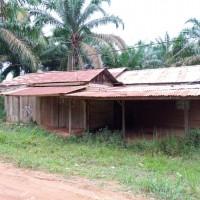 1 bidang tanah dengan total luas 3443 m2 di Kabupaten Muaro Jambi