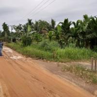 1 bidang tanah dengan total luas 902 m2 di Kabupaten Muaro Jambi