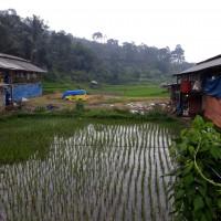 1. Bank Mandiri, tanah di Blok Babakan Girang Rt.02 Rw.01, Desa Pakuon, Kec. Sukaresmi, Kab. Cianjur