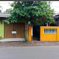 PNM Tegal: 1 bidang tanah dan bangunan SHM No. 01062 luas 207 m2 di Desa Sidorejo, Kec. Tirto, Kabupaten Pekalongan