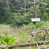 BPR Lingga Lot 2 : Sebidang tanah dengan total luas 312 m2 di Kabupaten Kotawaringin Barat