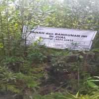 BPR Lingga Lot 3 : sebidang tanah dengan total luas 330 m2 di Kabupaten Kotawaringin Barat