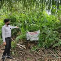BPR Lingga Lot 1 : 1 bidang tanah dengan total luas 1183 m2 di Kabupaten Kotawaringin Barat