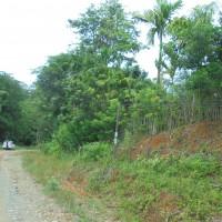 BRI Tenggarong - 1 bidang tanah dengan total luas 6106 m2, SHM No. 270, berikut segala sesuatu di atasnya, di Kabupaten Kutai Kartanegara