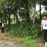 PT.PNM Kaltara : 2 bidang tanah kosong SHGB No.00956 luas 133 m2 & SHM No.01867 luas 228 m2 terletak di Juata Permai Kota Tarakan