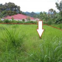 [BPD] 2. Sebidang tanah luas 728m2 berikut turutannya sesuai SHM No 52 di Kenagarian Koto Tinggi, Kec. Baso