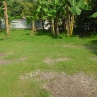 1. BPR Prima Nadi Cabang Gerung - 1 bidang tanah dengan total luas 204 m2 di Kota Mataram