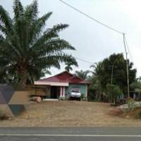 PT. BRI KC PANYABUNGAN : Tanah seluas 984 m2 & rumah, SHM No.291 An. Samsul Bahri, di Desa Bagun Saroha Kec. Ranto Baek