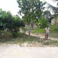 1 bidang tanah dengan total luas 381 m<sup>2</sup> di Kabupaten Muaro Jambi