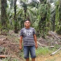 1 bidang tanah dengan total luas 23581 m<sup>2</sup> di Kabupaten Merangin