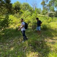 1 bidang tanah dengan total luas 5000 m<sup>2</sup> di Kabupaten Luwu Timur