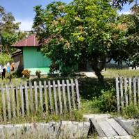 1 bidang tanah dengan total luas 461 m2 berikut bangunan di Kabupaten Tojo Una-una (PT. PNM Cab. Palu) Lot 3