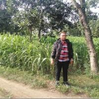 PNM - Sebidang tanah dengan total luas 5.055 m2, SHM No. 44/Kladi, Kabupaten Bondowoso